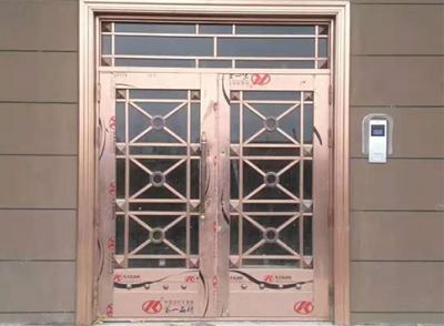 不锈钢仿铜楼宇对讲门